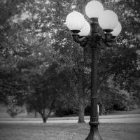 Lonely Lamp Post Art Prints & Posters by Christina Stanley