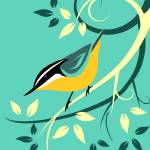 """deco-nuthatch-aqua2"" by waterart"