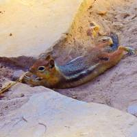 Playing in the Sand by Sandy O'Toole