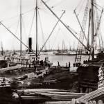 """""""oak_lumbering_ships_pSP"""" by worldwidearchive"""