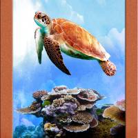 """sea turtle color"" by RichardMurrey"
