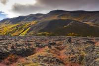 Fall Colors and Lava Fields, Northeastern Iceland