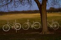 The Bicycle Fence .