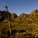 """""""Chisos Basin , Big Bend NP"""" by TEHuchton"""