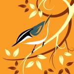 """deco-nuthatch-orange2"" by waterart"