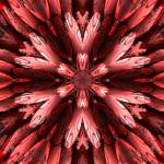 """""""Abstract Armour Red Flowerf"""" by ecolosimo"""