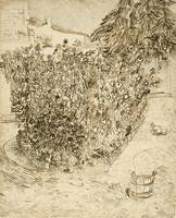 Garden of a Bathhouse Arles, August 1888 Vincent v