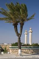 Tunis, two minarets.