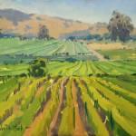 """""""Vineyard Patterns SM"""" by KimVanDerHoek"""