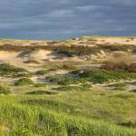 """Cape Cod Dune Lands"" by ChrisSeufert"