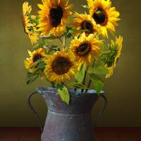 Sunflowers in Copper Bucket by I.M. Spadecaller