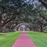 """""""Tunnel of Oaks"""" by beecreekphotography"""