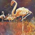 """""""Watercolor painting of flamingo standing"""" by RFoxWatercolors"""