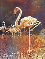 Watercolor painting of flamingo standing