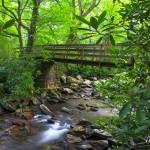 """""""alum-cave-trail-bridge"""" by rouser"""