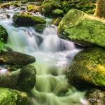 """""""jim-bales-rapids"""" by rouser"""