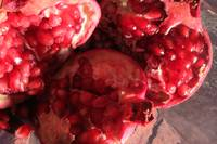 Pomegranates Spacescape
