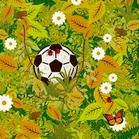Ball on forest floor
