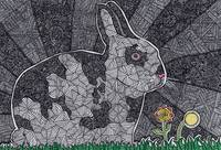 Rabbit of Abstraction