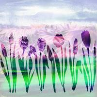 Purple Tulips Silhouette Watercolor
