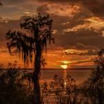 """Sunset LW"" by DAJOPHOTOS"
