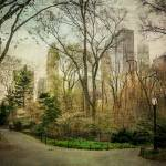 """IMG_44752T Central Park nyc"" by JPMcCool"