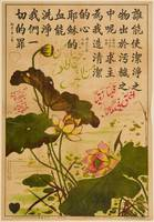 The Lotus (Chinese Arabic)
