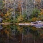 """""""Fall Reflections at DuPont State Forest"""" by cdomenig"""