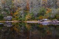 Fall Reflections at DuPont State Forest