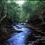 """short creek tenn"" by RichardBaumer"
