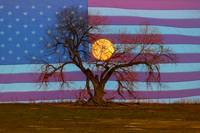 Patriotic Supermoon Tree