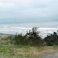Nearing The Beach by Patricia Schnepf