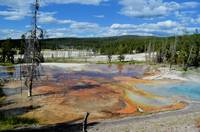 Yellowstone colorful mud