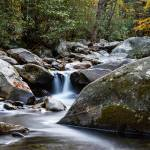 """""""West Prong Little Pigeon River II"""" by cdomenig"""