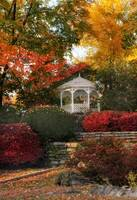 Autumn Gazebo