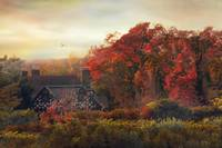 Tudor in Autumn