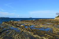 255 Tide Pools - Panama