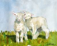 sheep watercolor | sheep art |