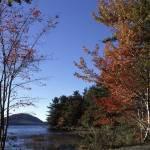 """""""acadia edge of eagle lake"""" by RichardBaumer"""