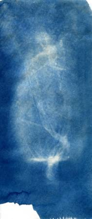 jar photogram cyanotype