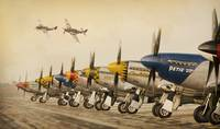 Jeff_Stephenson_Photography_Dirty_Dozen_P-51_Musta