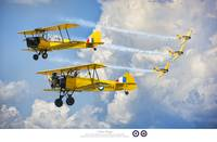 Jeff_Stephenson_Photography_Yellow_Wings_Tribute