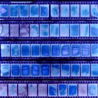 1/2 frame 35mm contactsheet sun print Art Prints & Posters by john nanian
