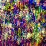 """""""Colour Pop Squeeze"""" by CatWalker"""