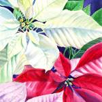 """Beautiful Poinsettia Christmas Holiday Decor"" by IrinaSztukowski"