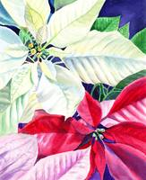 Beautiful Poinsettia Christmas Holiday Decor