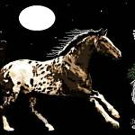 """Appaloosa Moon"" by davegafford"