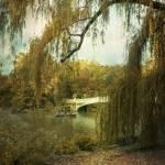 """Neath the Willow"" by JohnRivera"