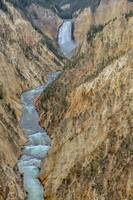 Lower Falls of the Yellowstone Canyon