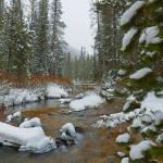 """""""Where The Creek Flows"""" by artsandi"""